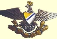 odznaka9